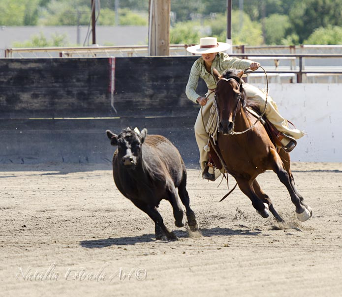 Ranch blog archive feel caf ranch roping for Costruire un ranch
